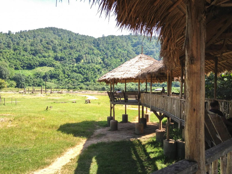 View of Elephant Nature Park
