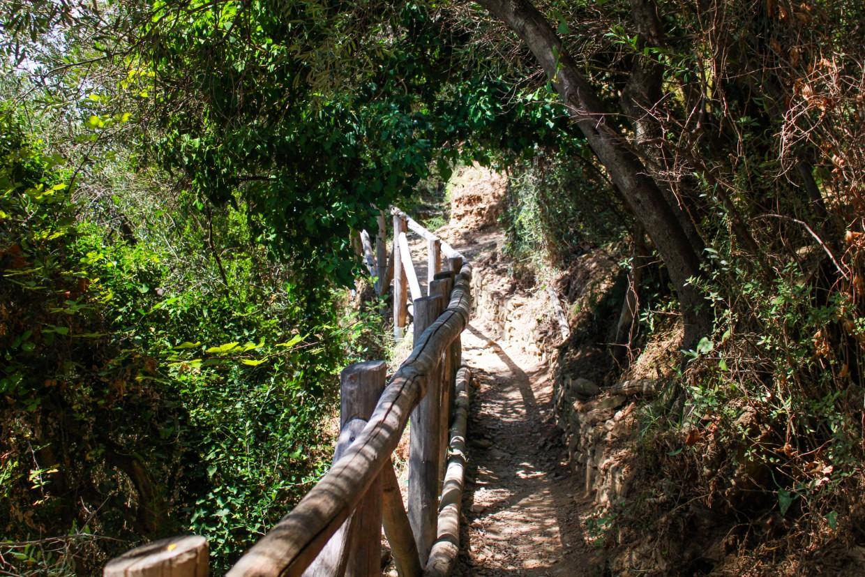 Cinque Terre hiking path