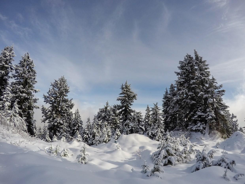 Snow blanket, Grouse Mountain