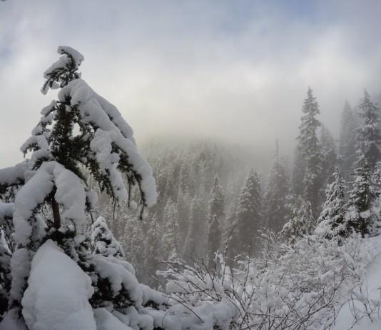 Grouse Mountain Winter Wonderland, Canada