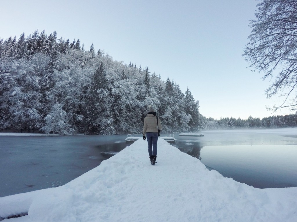Alice Lake Provincial Park in WInter