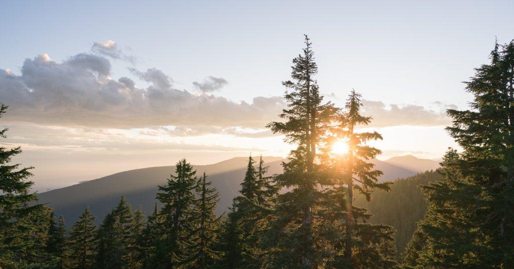 Summer Wanderings On Grouse Mountain