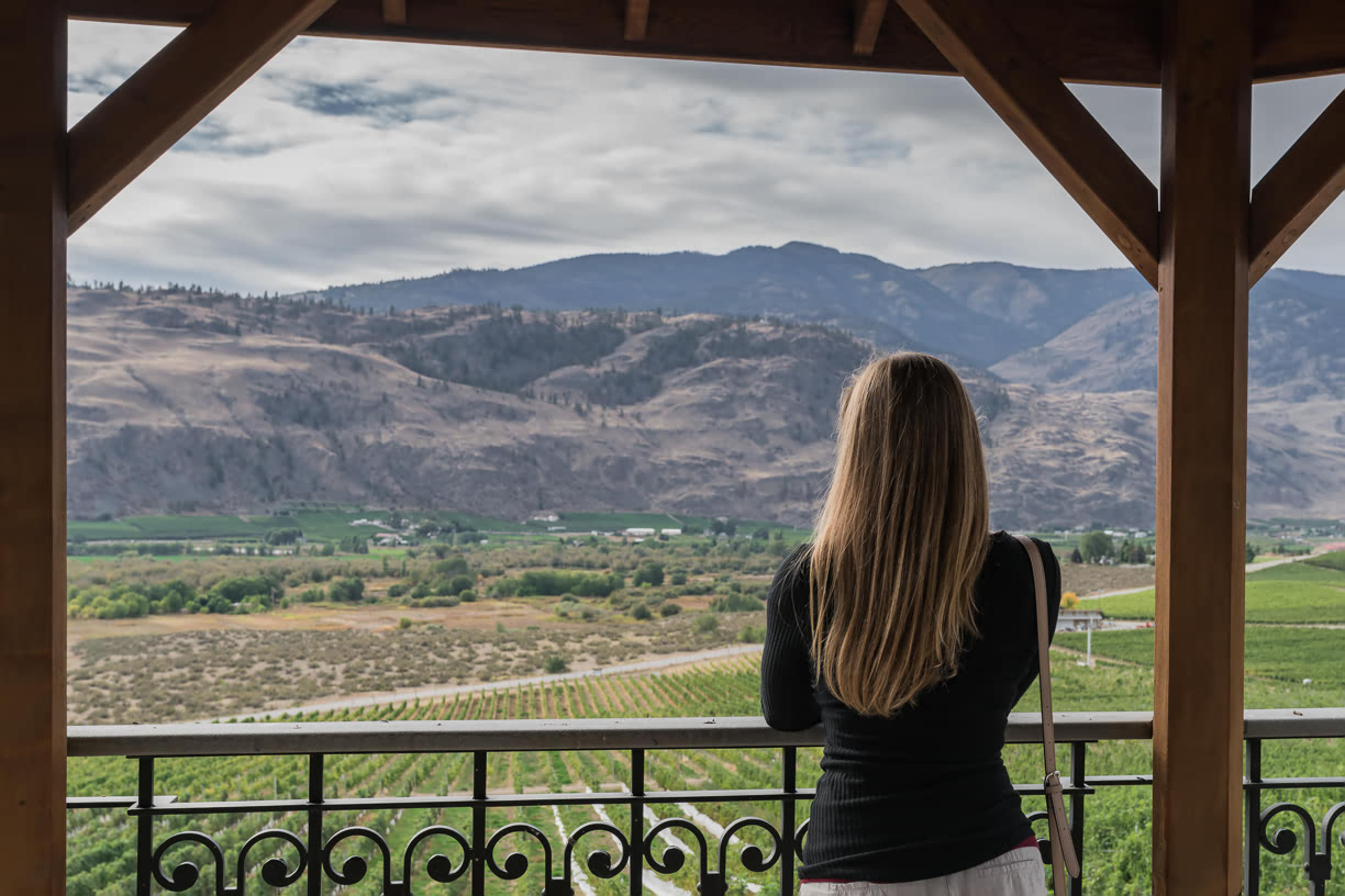 View over the Burrowing Owl vineyards