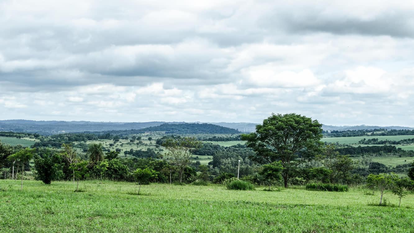 Landscape Paraguay