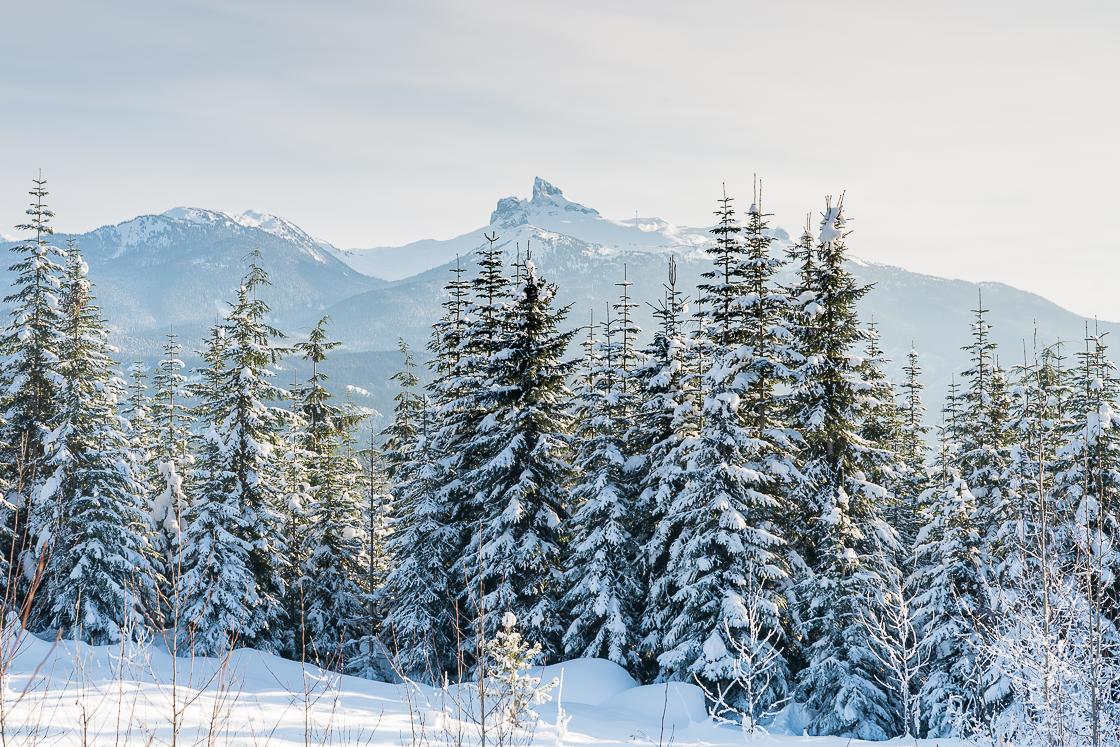 Snow in Whistler
