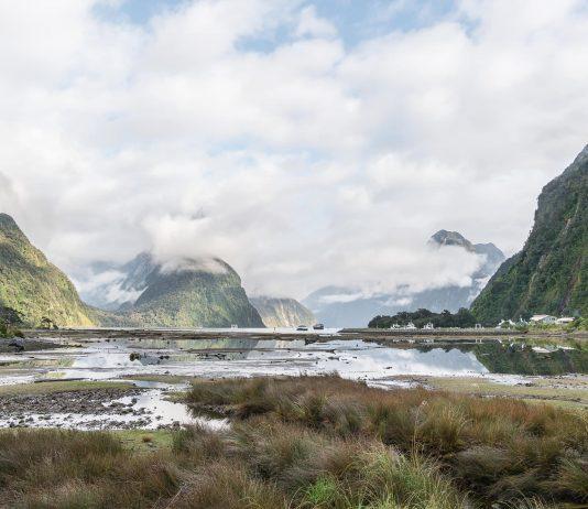 Fiordland cruises Milford Sound