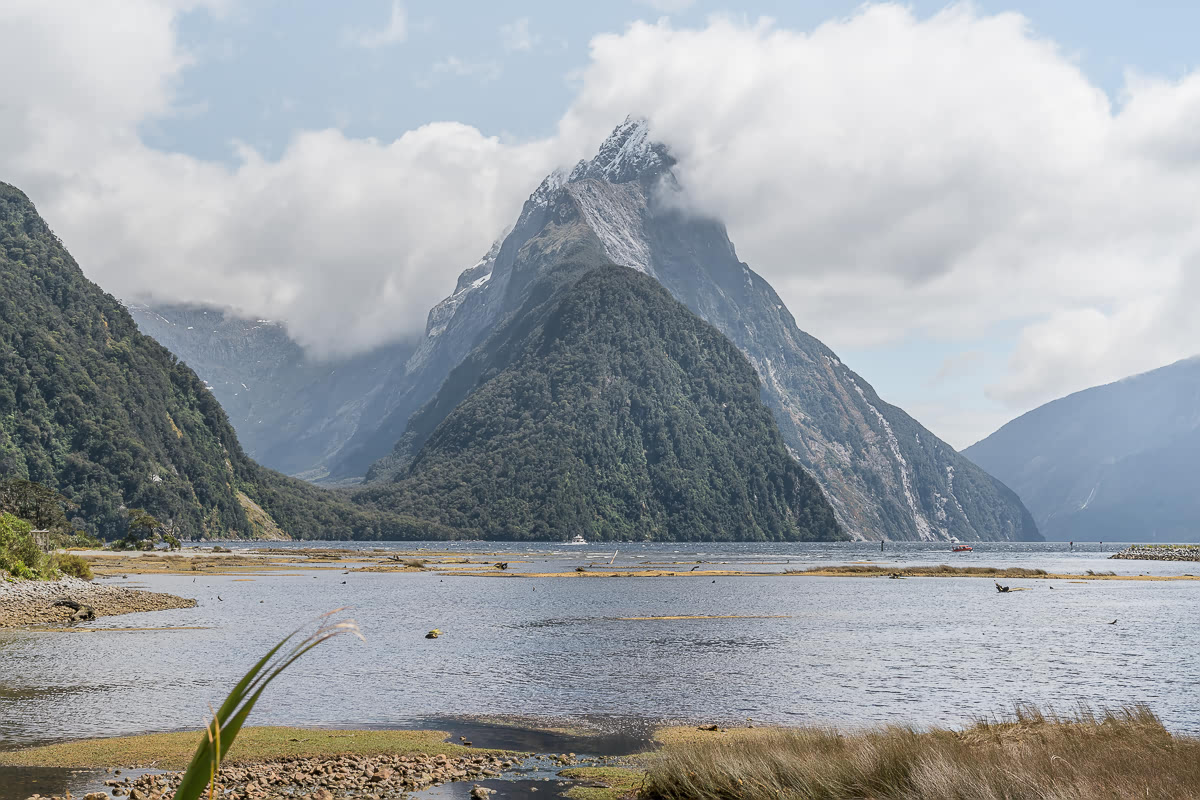 Milford Sound Day Trip