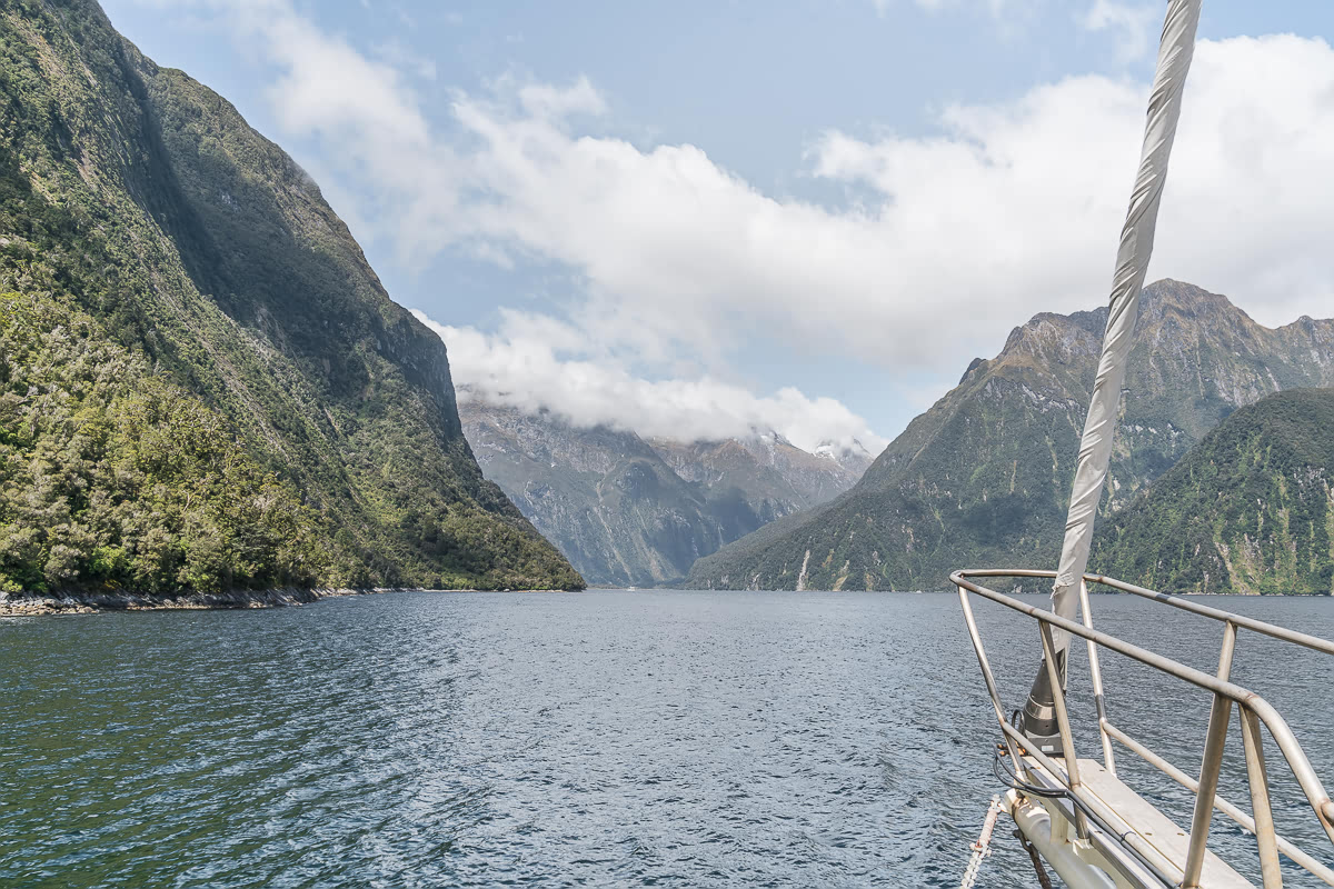 Milford Sound nature cruise Real Journeys