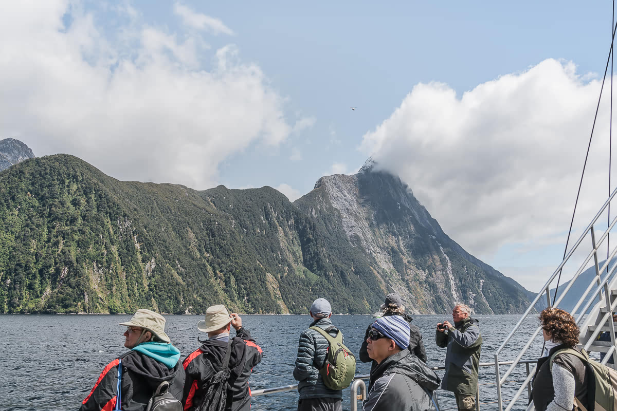 Nature Cruise on Milford Sound Real Journeys