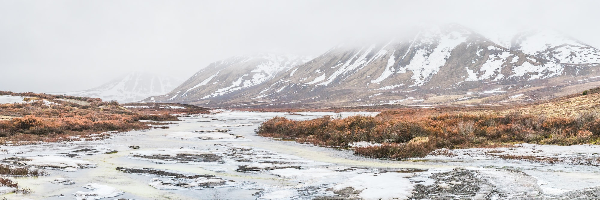 Dempster Highway Yukon Trips