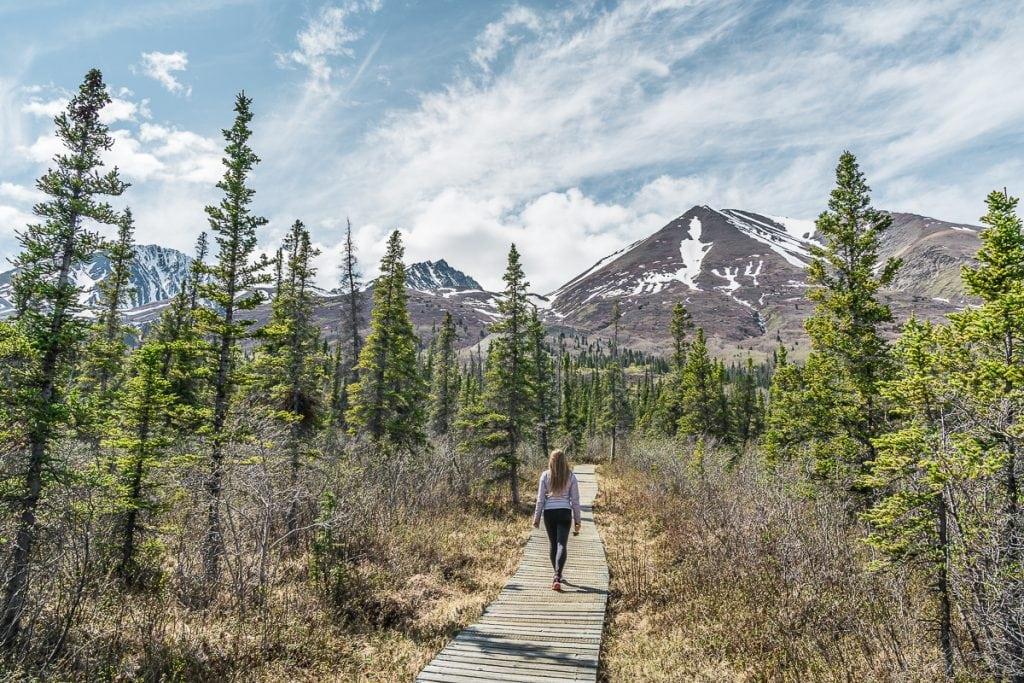 Hiking near Haines Road Yukon