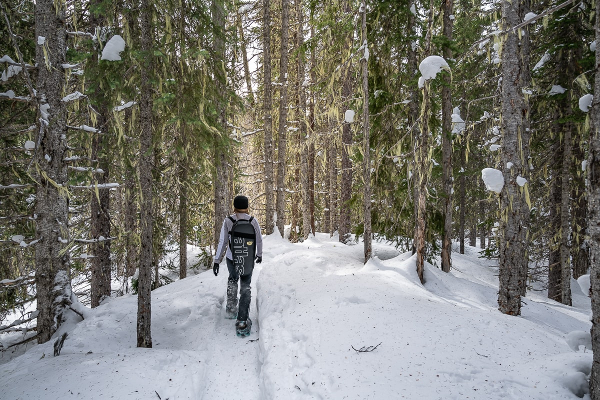 backcountry snowshoeing manning park Canada