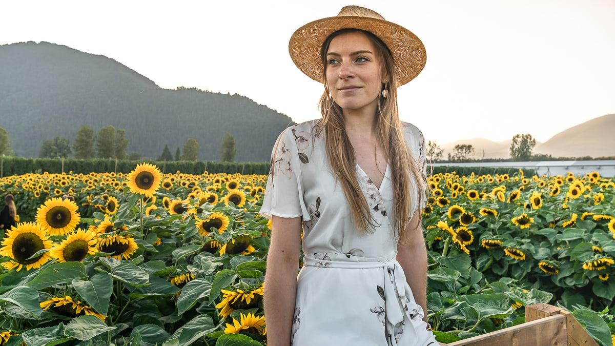 British Columbia Sunflower Festival