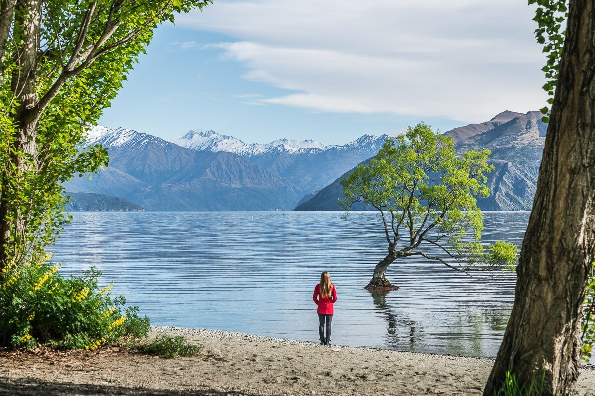Standing by Wanaka Lake with Wanaka Tree