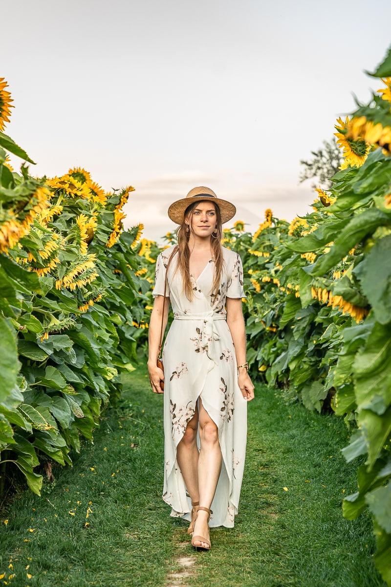 Walking in Sunflower Field BC