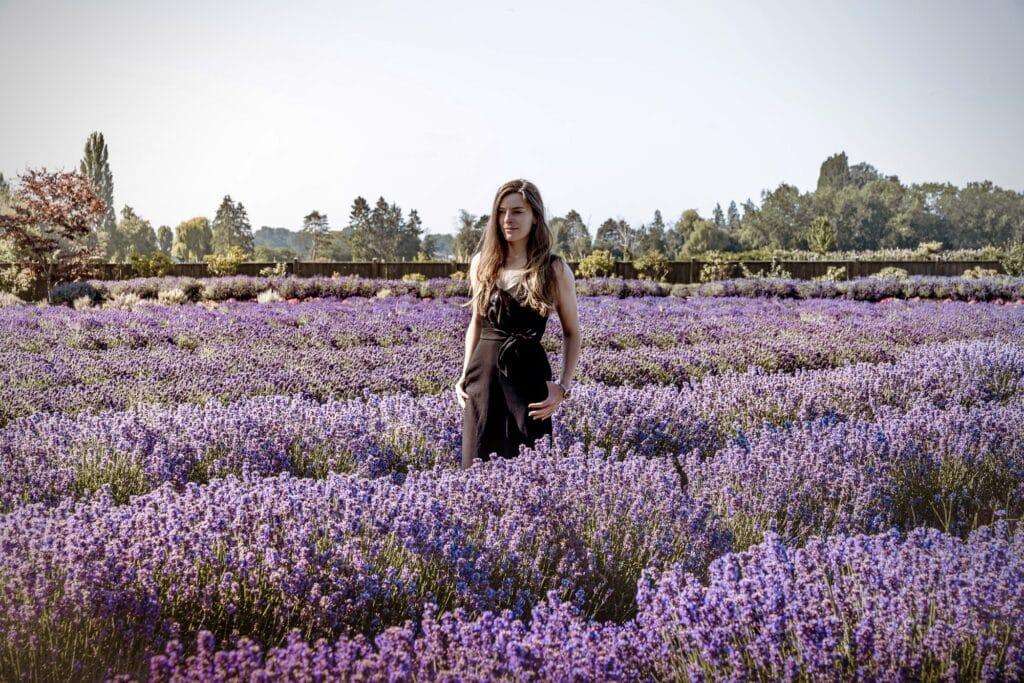 lavender farm photoshoot